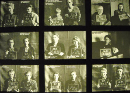 Some of the female prisoners that were at the Bergen-Belsen POW & KZ Camp.