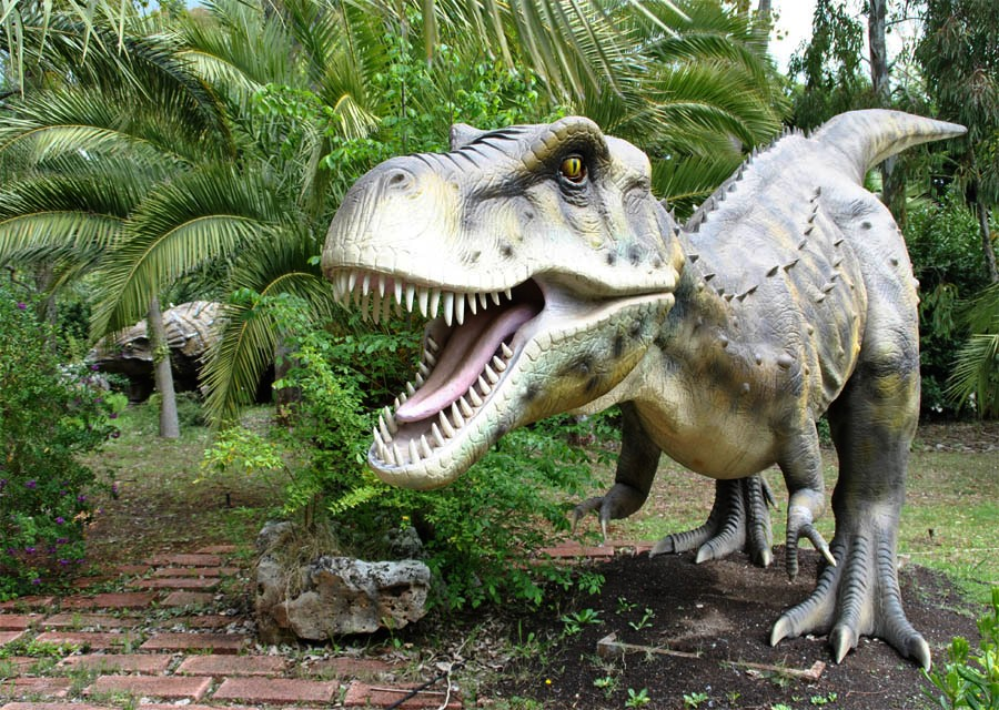 Related Keywords Suggestions For Dinosaurpark